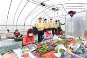 20201021-1-월항면 참외접목농가 방문
